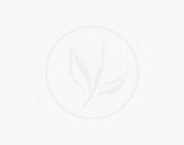 Lännenambrapuu 'Worplesdon'