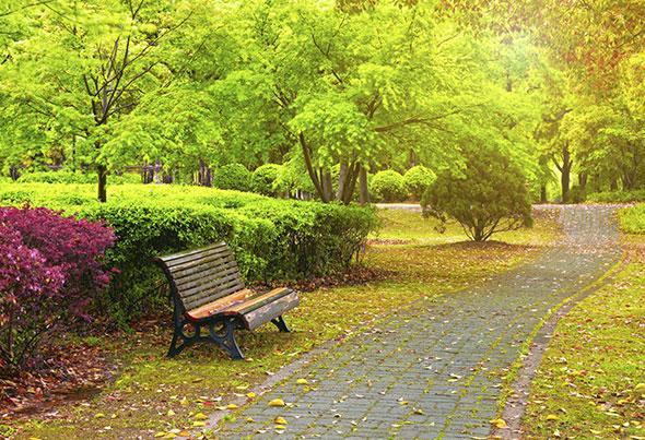 Erilaiset pensasaidat